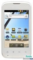 Communicator Fly IQ238 Jazz