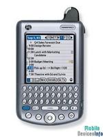 Communicator Palm Tungsten W