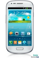 Communicator Samsung GT-I8190 Galaxy S III mini